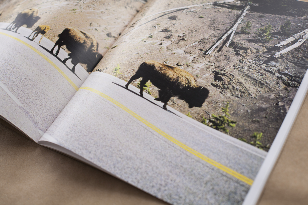 PANACEA photo book full page spread