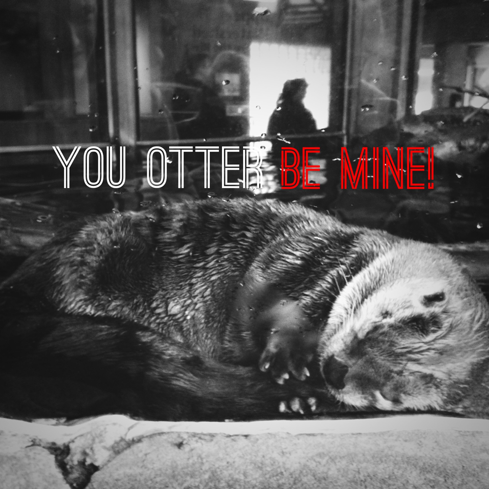 You otter be mine
