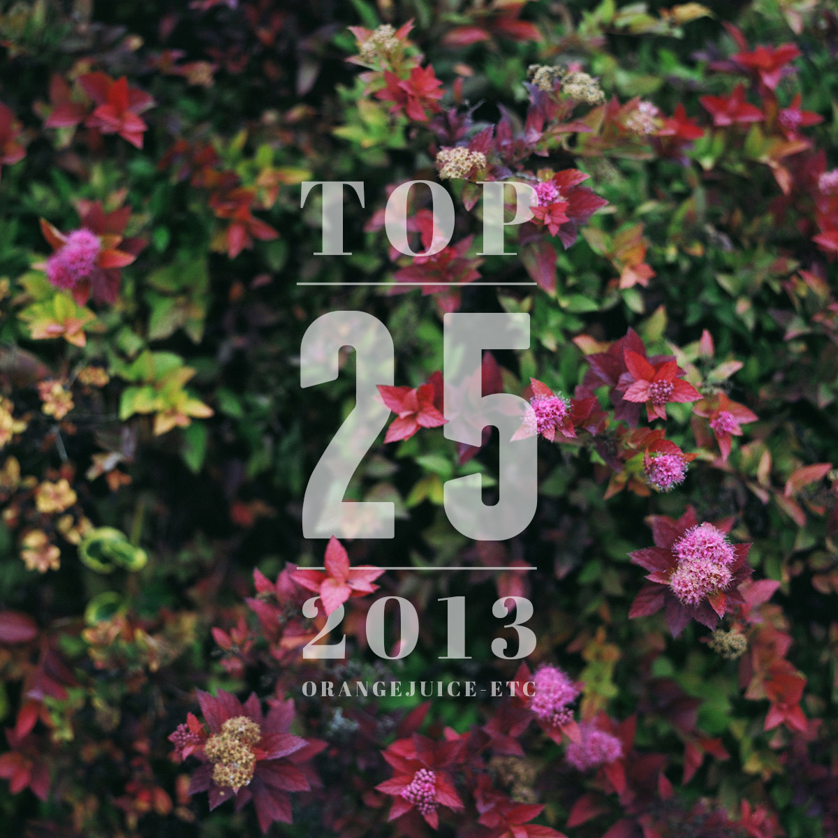 Top-25-2013-cover