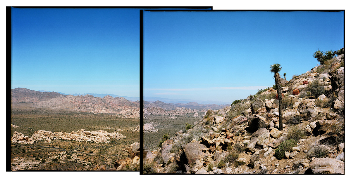 57210003-diptych